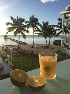 Fresh juice + stellar view, anyone?